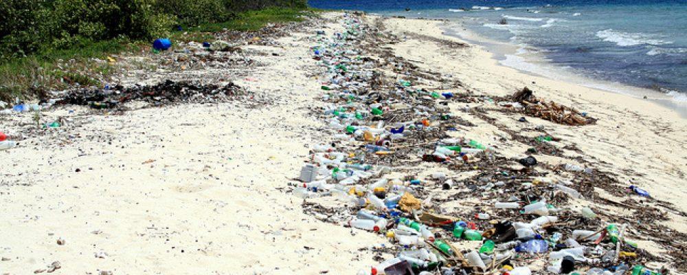 Clean Rivers, Clean Beaches, More Money